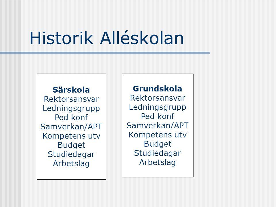 Historik Alléskolan Särskola Grundskola Rektorsansvar Rektorsansvar