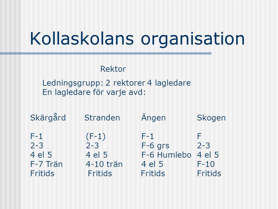 Kollaskolans organisation