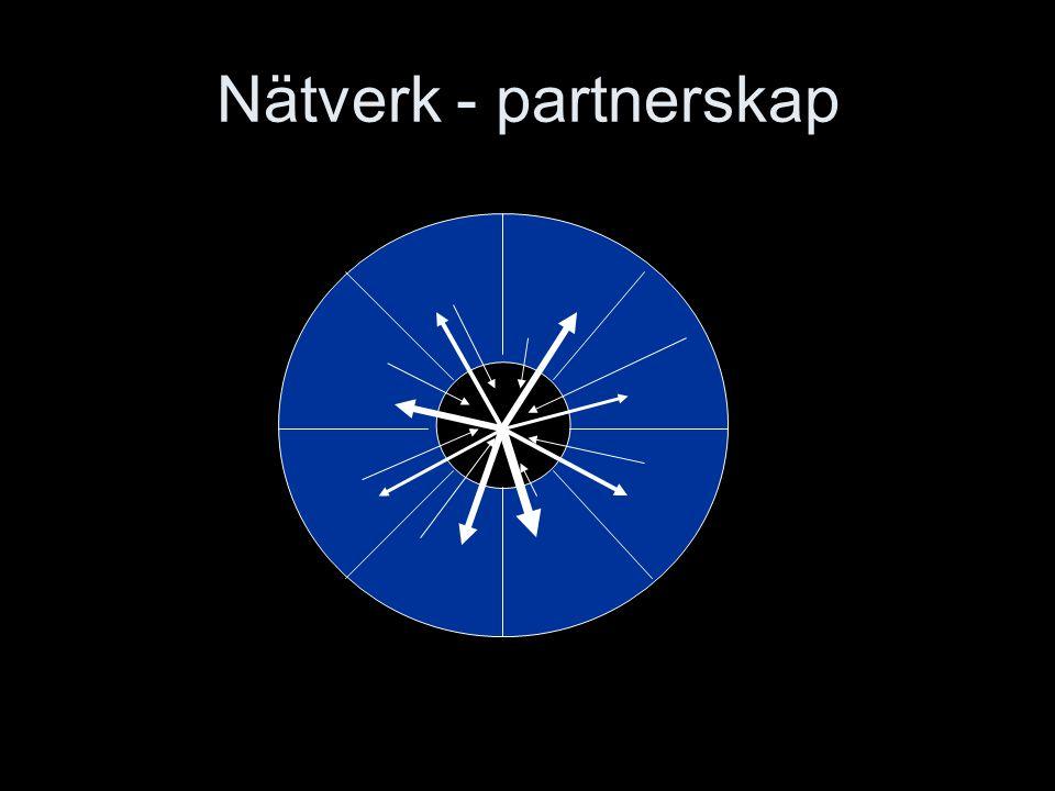 Nätverk - partnerskap