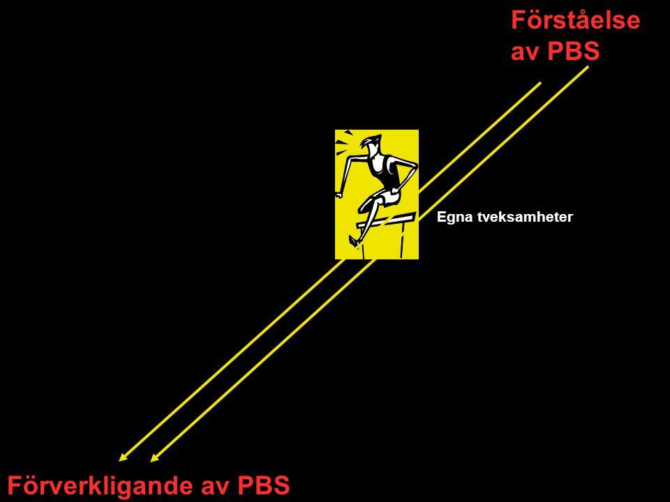 Förståelse av PBS Egna tveksamheter Förverkligande av PBS