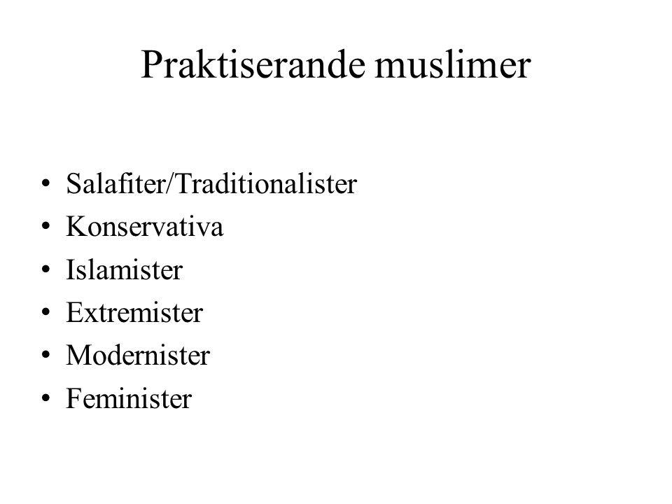 Praktiserande muslimer