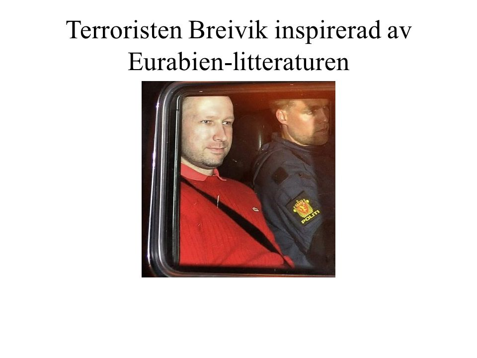 Terroristen Breivik inspirerad av Eurabien-litteraturen