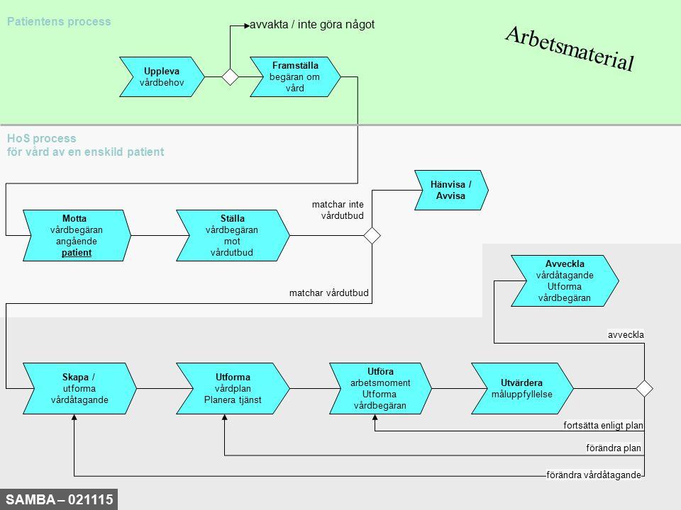 Arbetsmaterial SAMBA – 021115 Patientens process