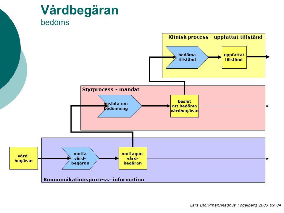 Vårdbegäran bedöms Klinisk process - uppfattat tillstånd