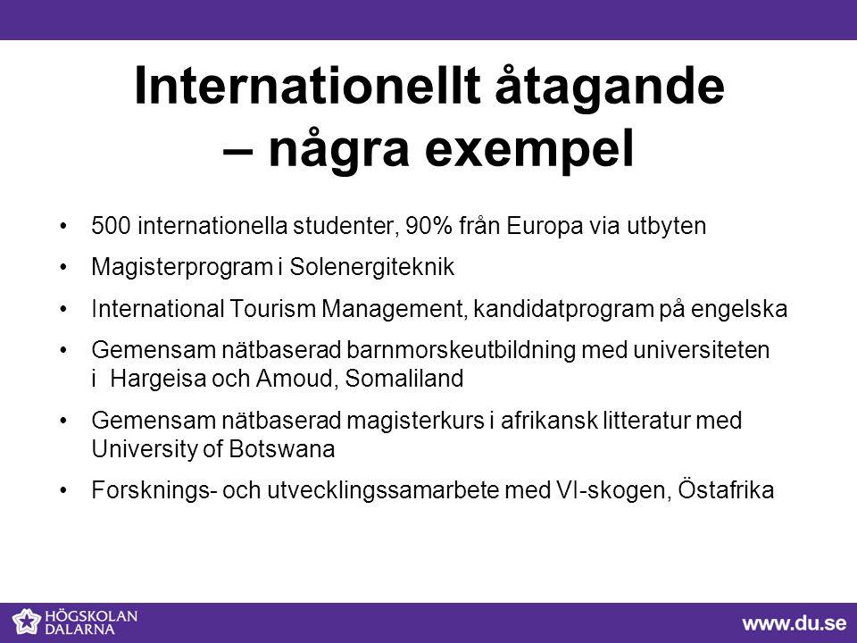 Internationellt åtagande – några exempel