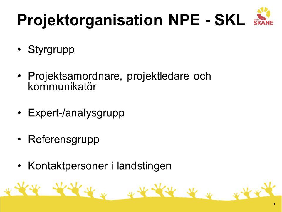 Projektorganisation NPE - SKL