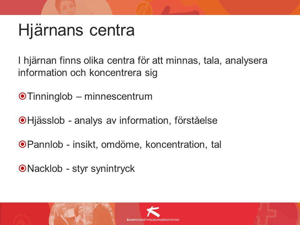 Hjärnans centra I hjärnan finns olika centra för att minnas, tala, analysera information och koncentrera sig.