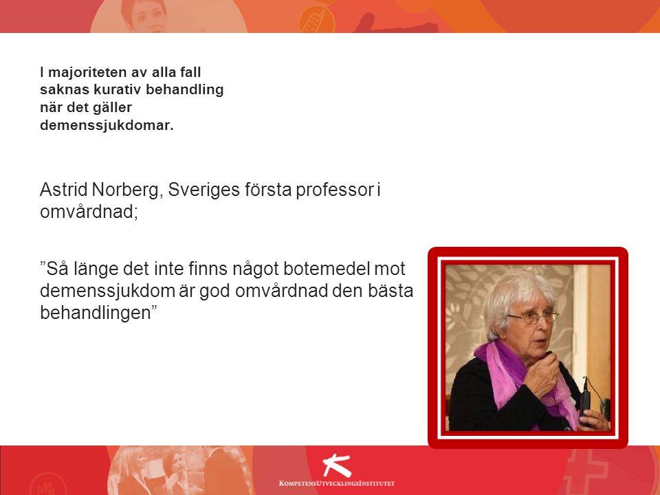 Astrid Norberg, Sveriges första professor i omvårdnad;