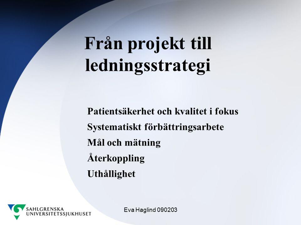 Från projekt till ledningsstrategi