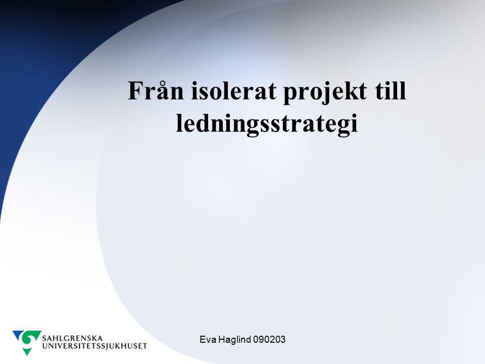 Från isolerat projekt till ledningsstrategi