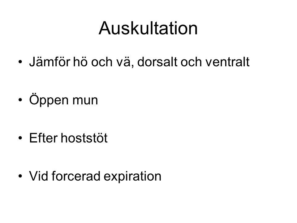 Auskultation Jämför hö och vä, dorsalt och ventralt Öppen mun