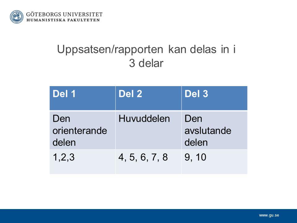 Uppsatsen/rapporten kan delas in i 3 delar