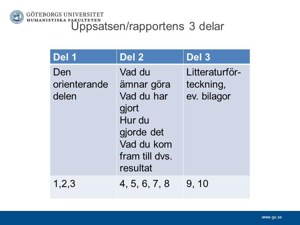 Uppsatsen/rapportens 3 delar