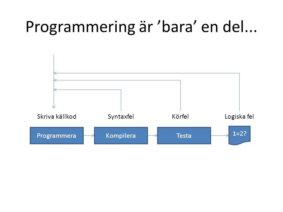 Programmering är 'bara' en del...