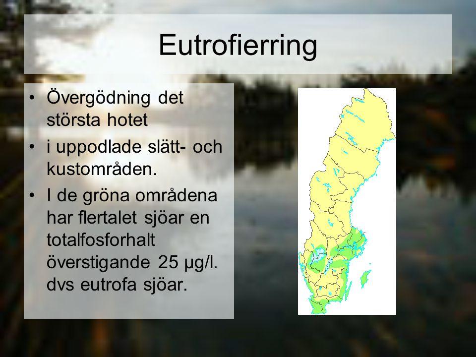 Eutrofierring Övergödning det största hotet