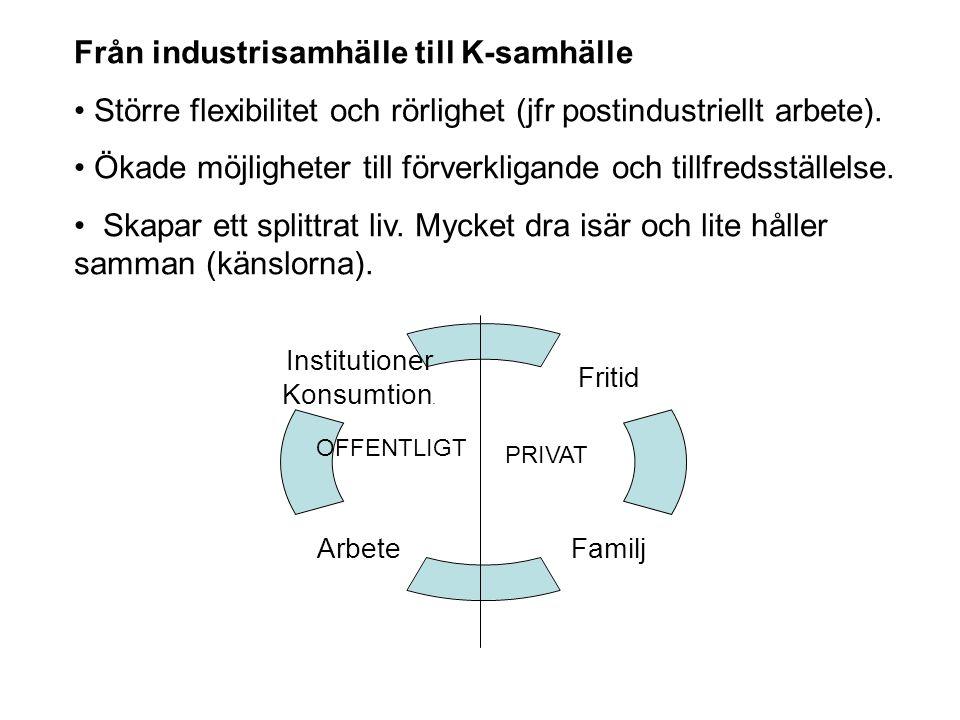Från industrisamhälle till K-samhälle