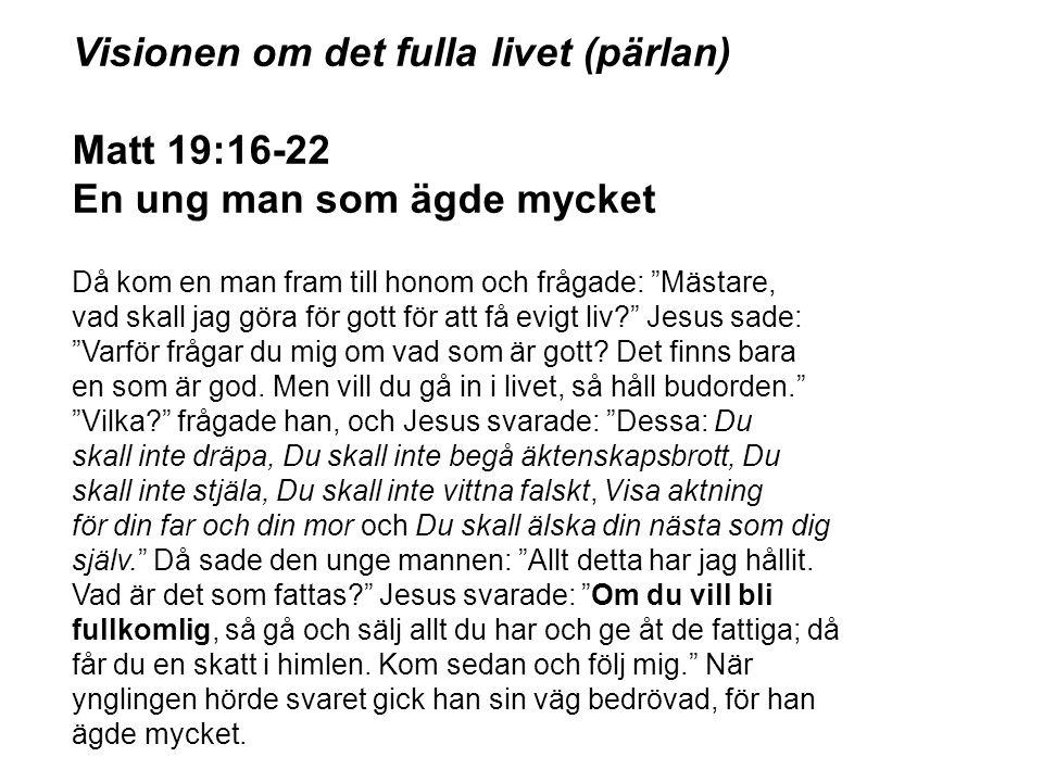 Visionen om det fulla livet (pärlan) Matt 19:16-22