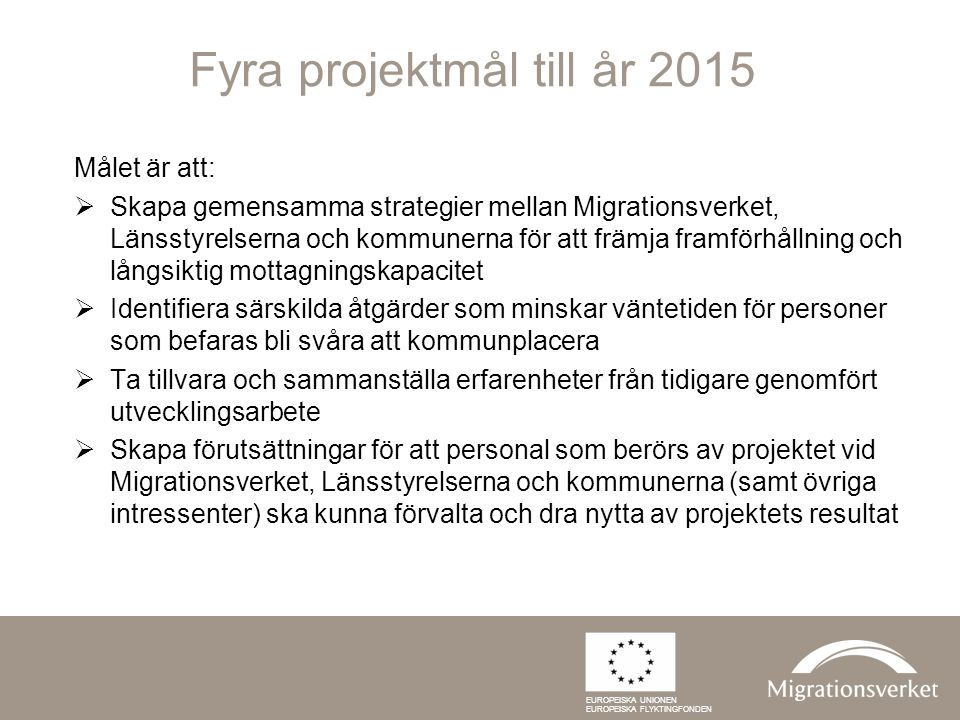 Fyra projektmål till år 2015