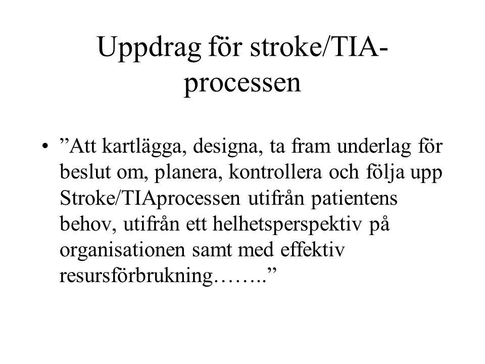 Uppdrag för stroke/TIA-processen