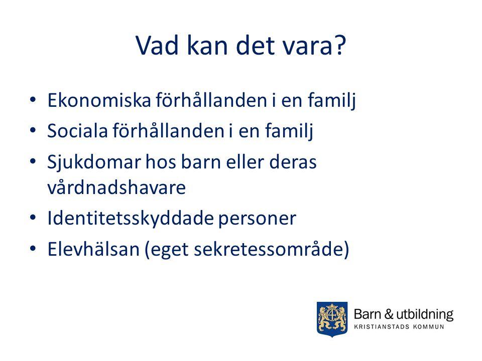 Vad kan det vara Ekonomiska förhållanden i en familj