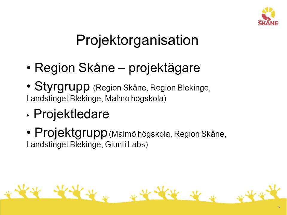 Projektorganisation Region Skåne – projektägare