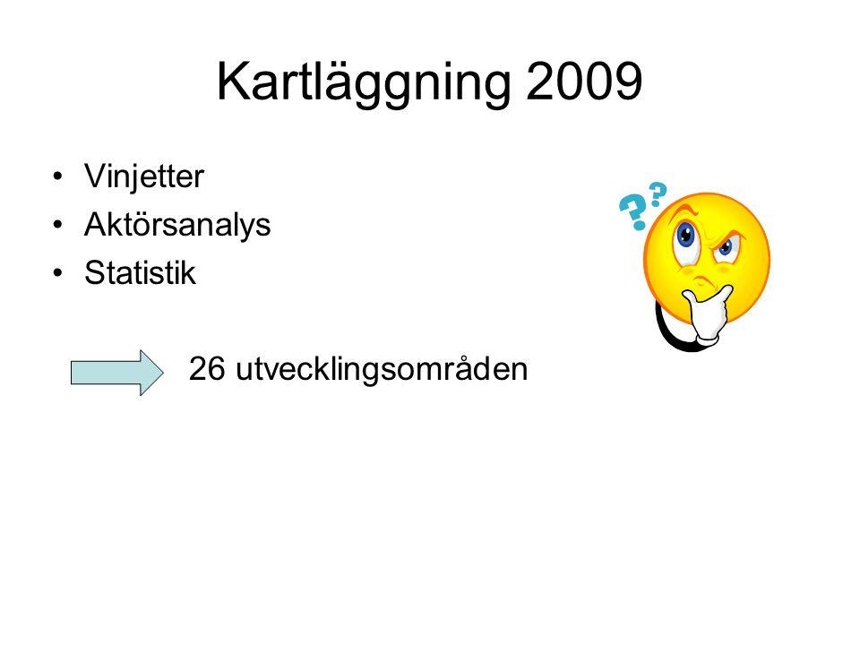 Kartläggning 2009 Vinjetter Aktörsanalys Statistik