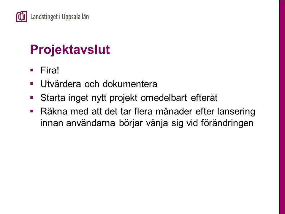 Projektavslut Fira! Utvärdera och dokumentera
