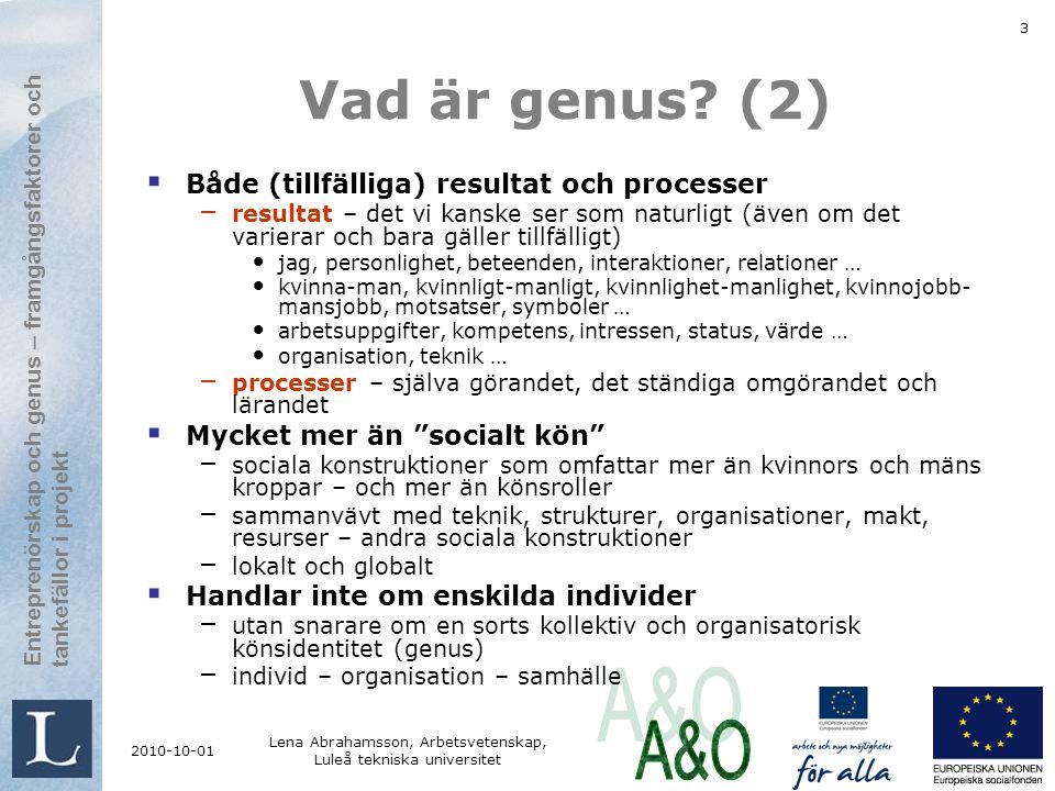 Lena Abrahamsson, Arbetsvetenskap, Luleå tekniska universitet