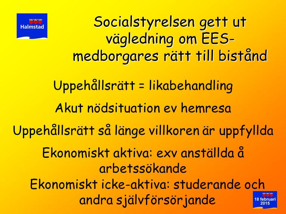 Socialstyrelsen gett ut vägledning om EES-medborgares rätt till bistånd