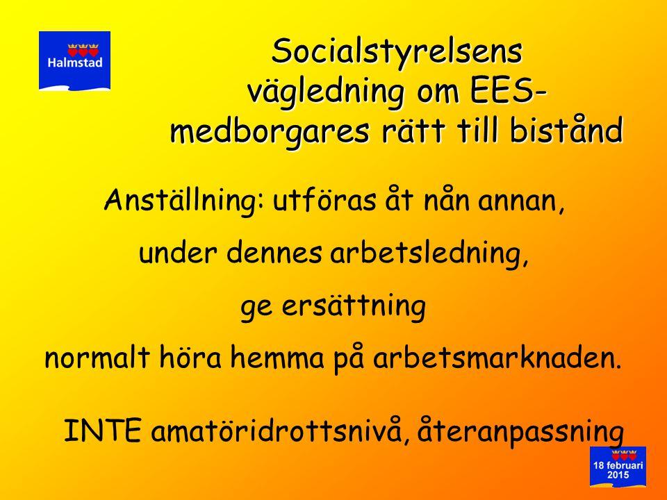 vägledning om EES-medborgares rätt till bistånd