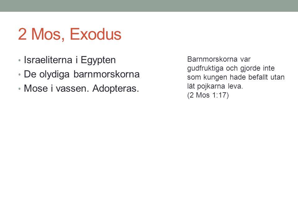 2 Mos, Exodus Israeliterna i Egypten De olydiga barnmorskorna