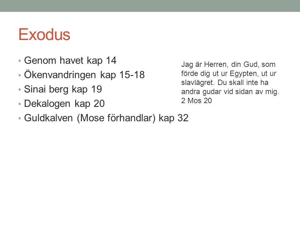 Exodus Genom havet kap 14 Ökenvandringen kap 15-18 Sinai berg kap 19