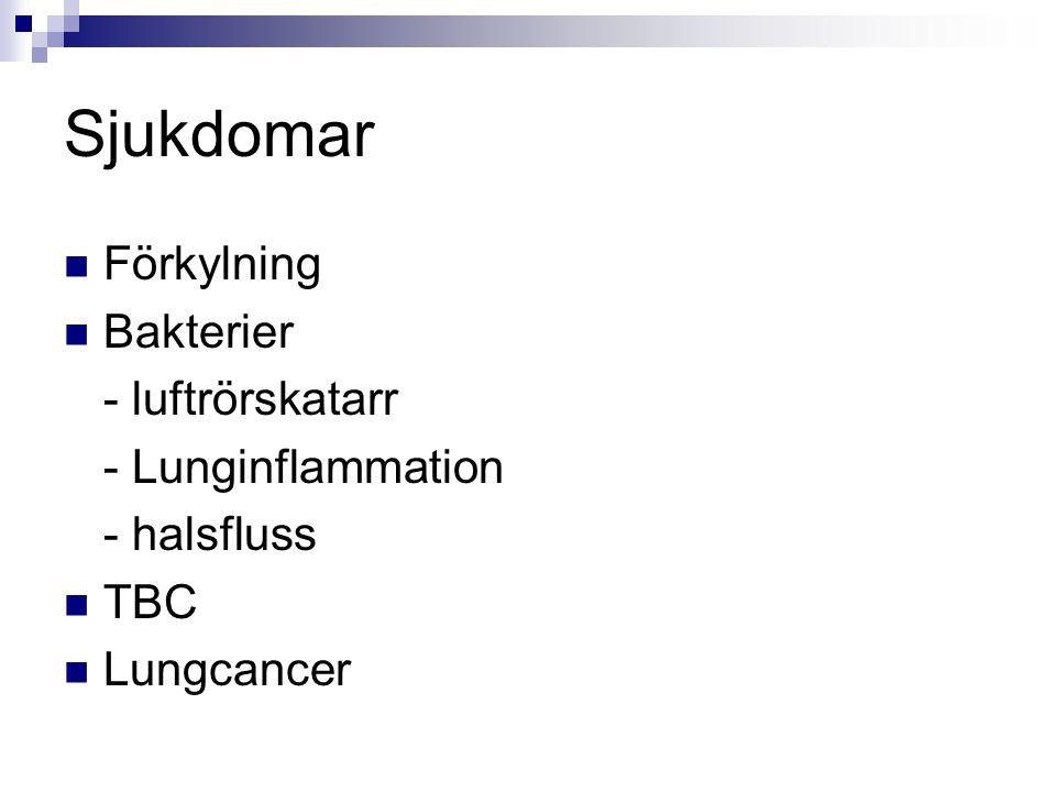 Sjukdomar Förkylning Bakterier - luftrörskatarr - Lunginflammation