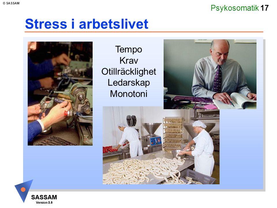 Stress i arbetslivet Tempo Krav Otillräcklighet Ledarskap Monotoni
