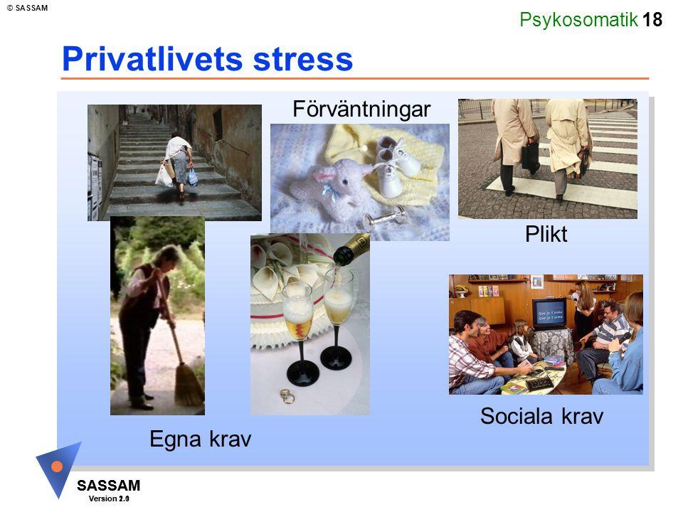 Privatlivets stress Förväntningar Plikt Sociala krav Egna krav