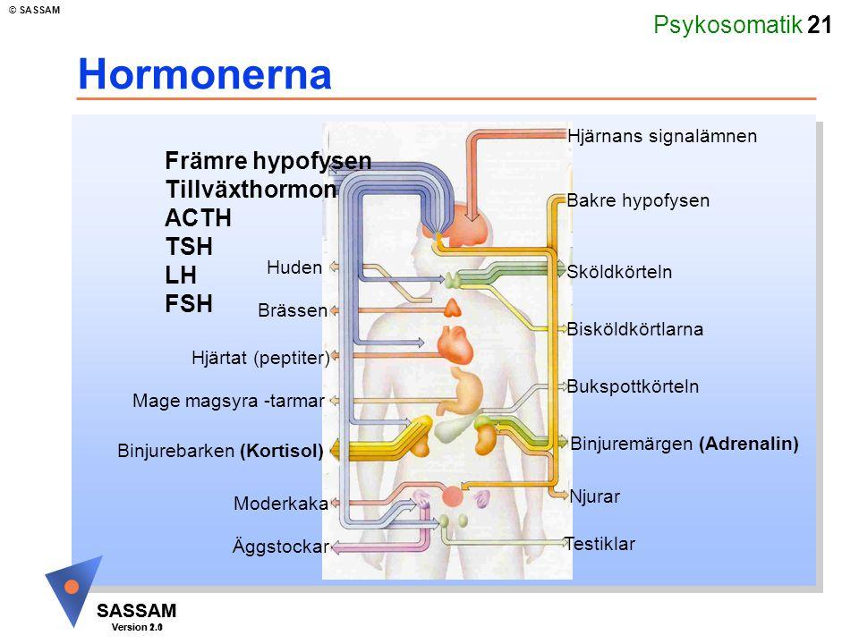 Hormonerna Främre hypofysen Tillväxthormon ACTH TSH LH FSH