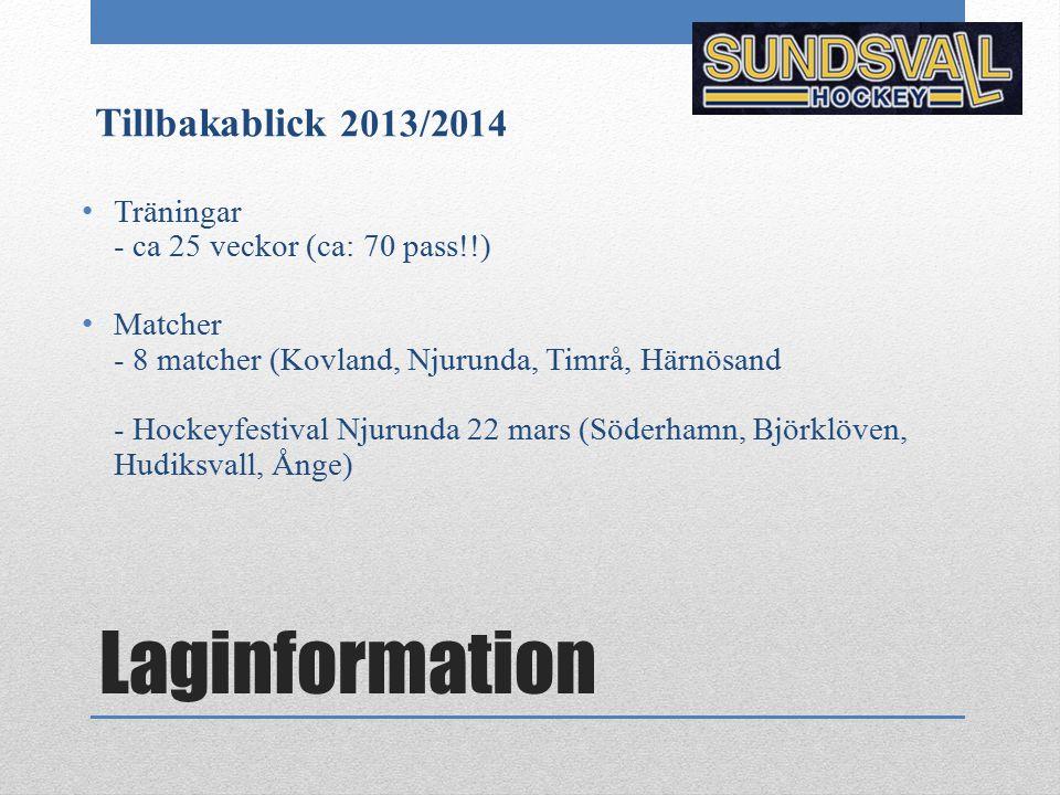 Laginformation Tillbakablick 2013/2014