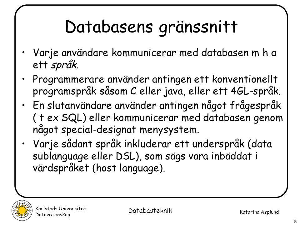 Databasens gränssnitt