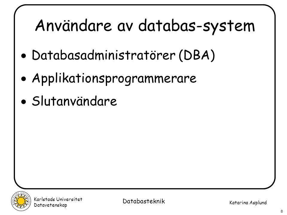Användare av databas-system