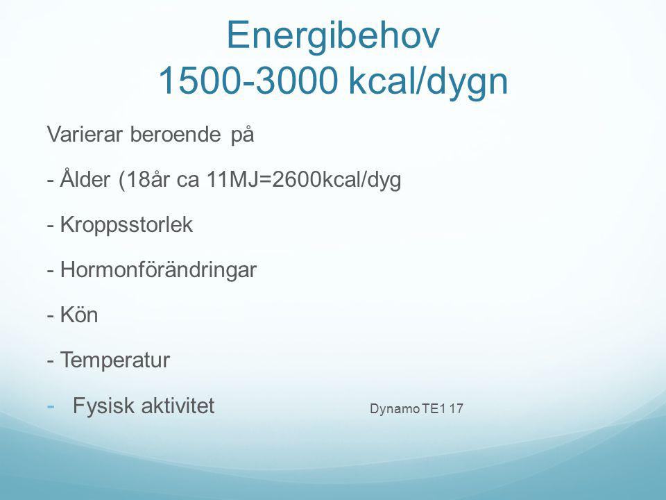 Energibehov 1500-3000 kcal/dygn