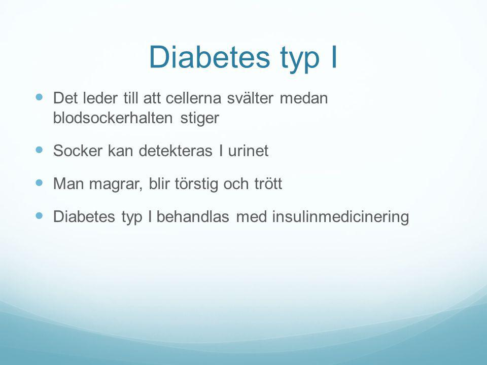 Diabetes typ I Det leder till att cellerna svälter medan blodsockerhalten stiger. Socker kan detekteras I urinet.