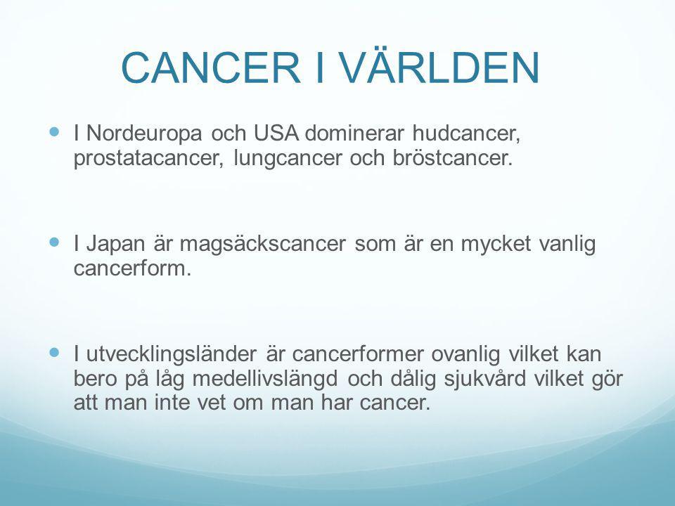 CANCER I VÄRLDEN I Nordeuropa och USA dominerar hudcancer, prostatacancer, lungcancer och bröstcancer.