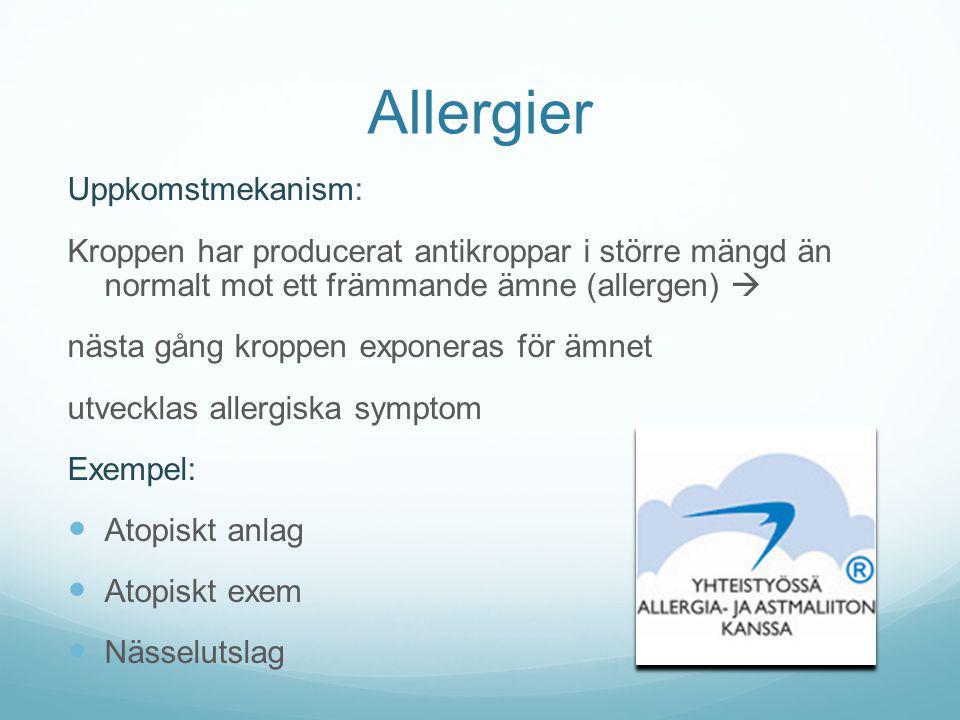 Allergier Uppkomstmekanism: