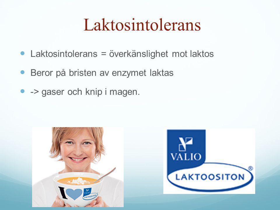 Laktosintolerans Laktosintolerans = överkänslighet mot laktos