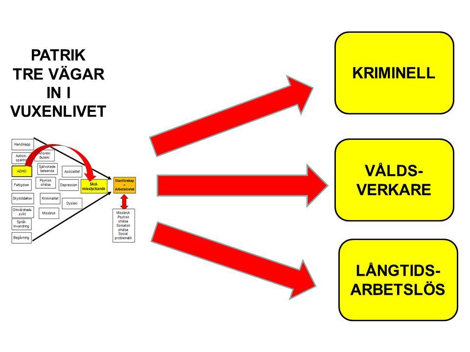 KRIMINELL PATRIK TRE VÄGAR IN I VUXENLIVET VÅLDS- VERKARE LÅNGTIDS- ARBETSLÖS
