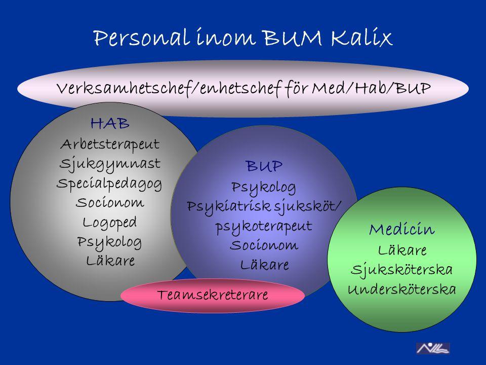 Personal inom BUM Kalix