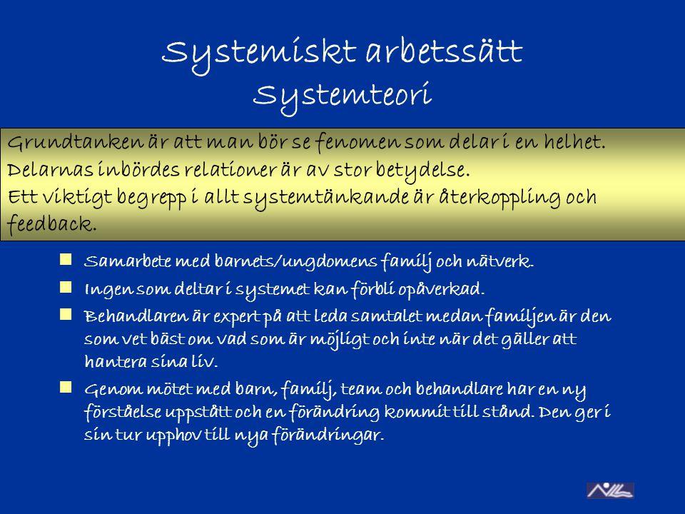 Systemiskt arbetssätt Systemteori