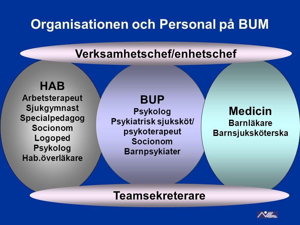 Organisationen och Personal på BUM