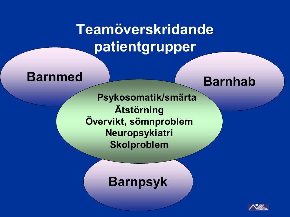 Teamöverskridande patientgrupper