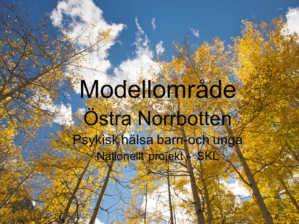 Modellområde Östra Norrbotten Psykisk hälsa barn-och unga